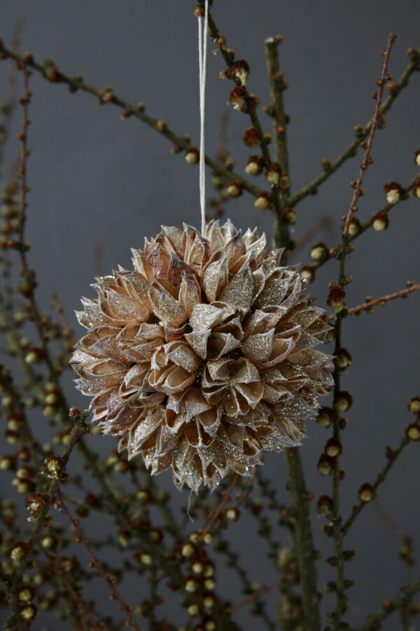 Ornament, Seeds, Nature (House Doctor)