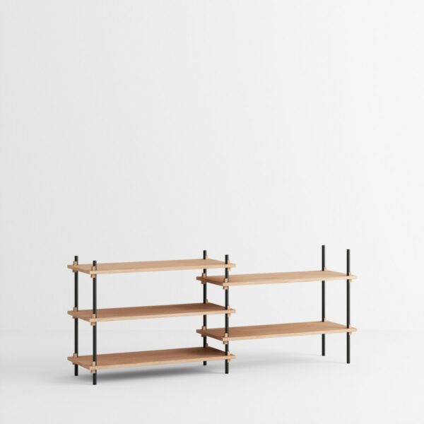 Shelving system s.65.2.a (Moebe)